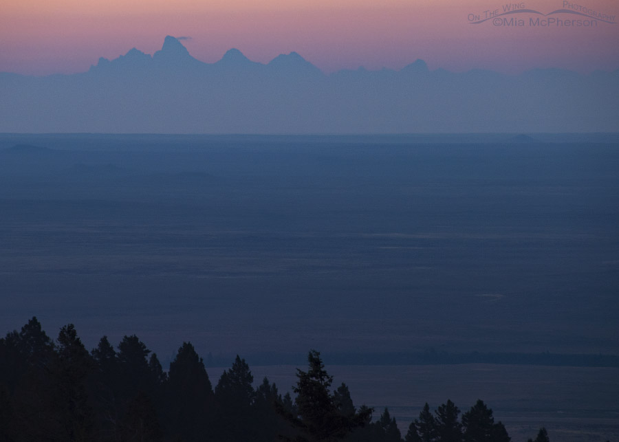 Predawn view of the west side of the Tetons