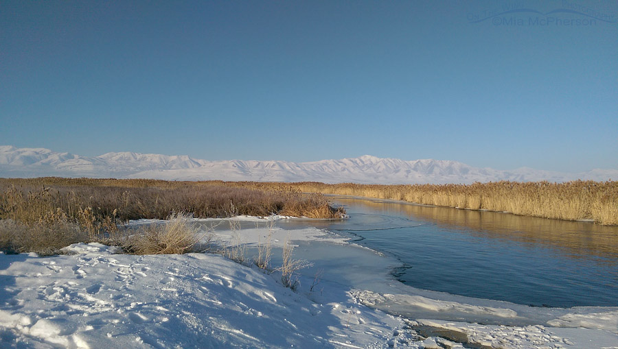 Wintry view of Bear River Migratory Bird Refuge and the Promontory Mountains
