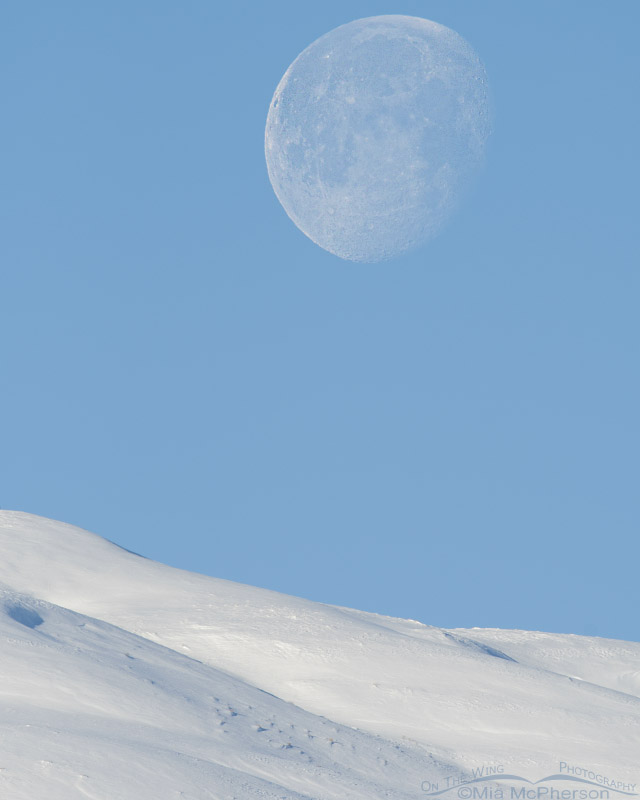 Moon setting over the snow-covered Promontory Mountains