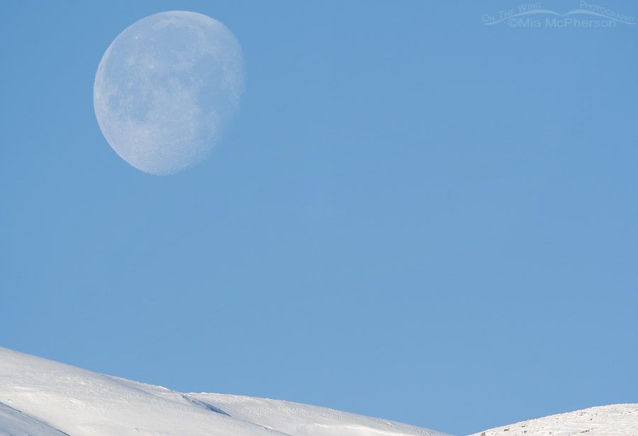 Snow-covered Promontory Mountains and the descending Moon