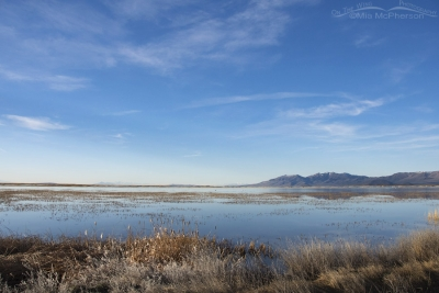 View of the water at Bear River MBR