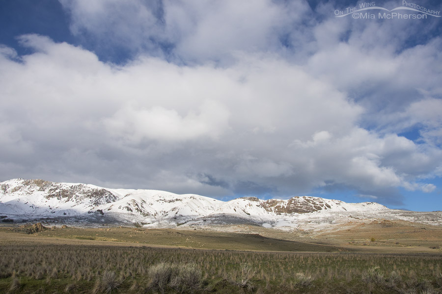Antelope Island's mountains covered in snow in April