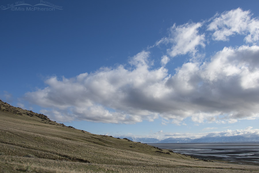 View of the Great Salt Lake with the Wasatch Mountains in the distance