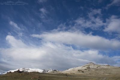 Spring snow on Antelope Island