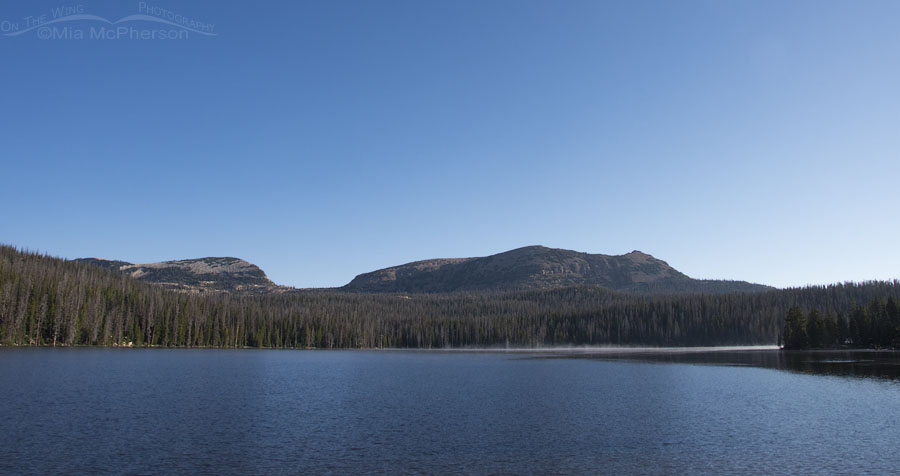 Trial Lake View - Uinta-Wasatch-Cache National Forest