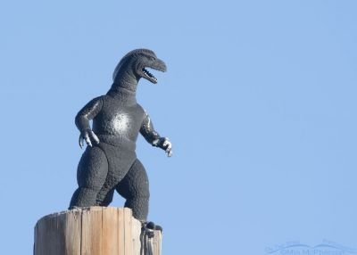Godzilla Reigns over the Salt Lake County Landfill