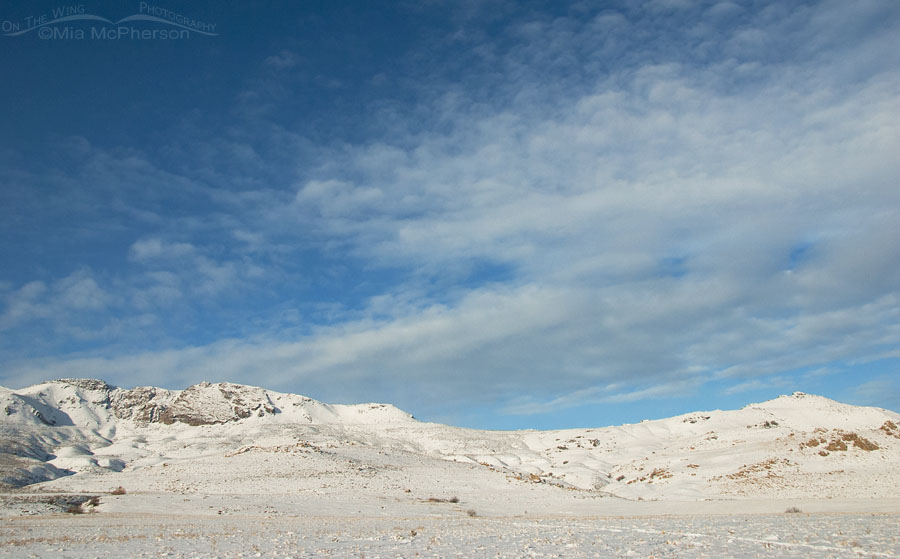 Bright winter day on snow-covered Antelope Island