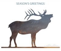 Seasons Greetings From On The Wing Photography
