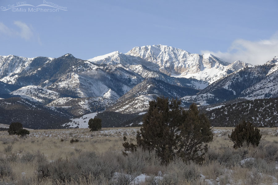Snow-covered Deseret Peak in the Stansbury Mountains